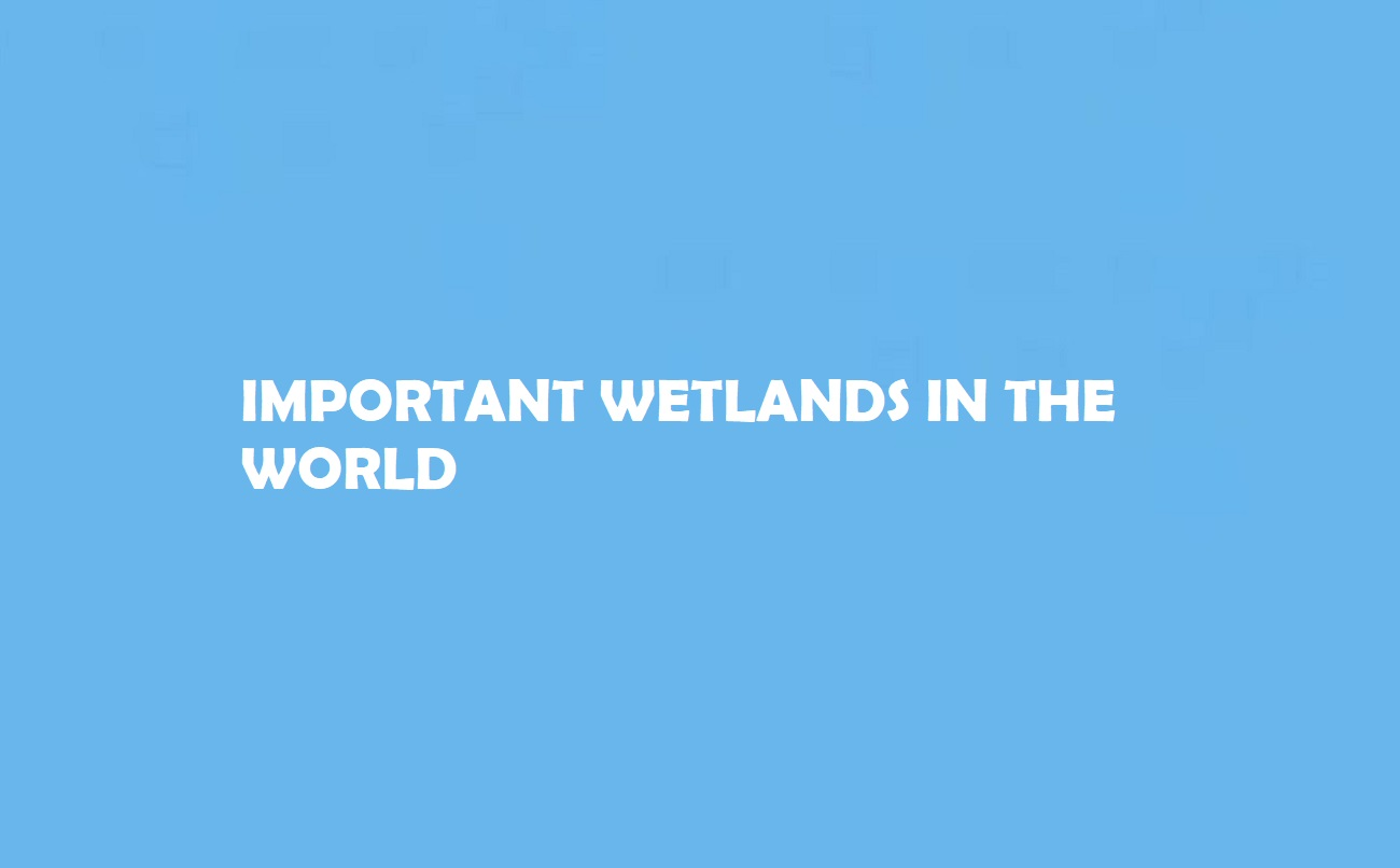 Wetlands in the World